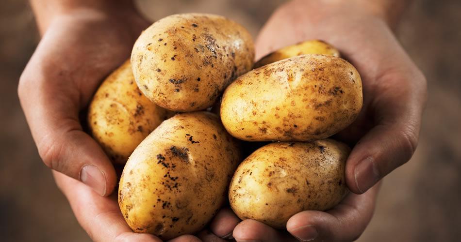 La finta patatina in busta